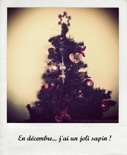 12decembre_effected