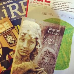 Dix Rêves de pierre de Blandine LeCallet