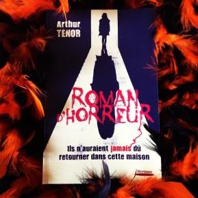 Roman d'horreur, d'ArthurTénor