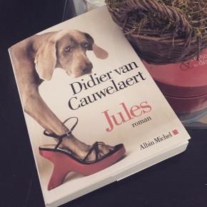 Jules, de Didier vanCauwelaert