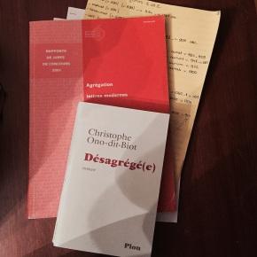 Désagrégé(e), de ChristopheOno-dit-Biot