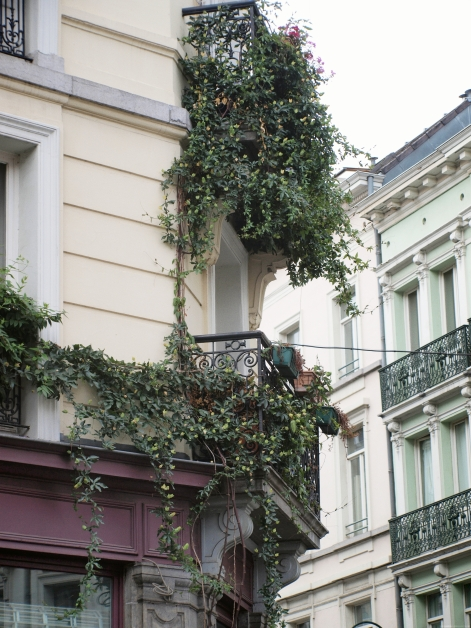 Une façade verte