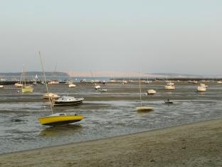 Bassin à marée basse