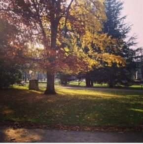 Les (petits) plaisirs del'automne