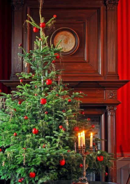 Noël . Château d'Amboise © L. de Serres