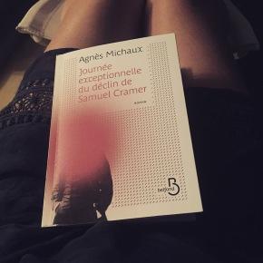 Journée exceptionnelle du déclin de Samuel Cramer, d'AgnèsMichaux