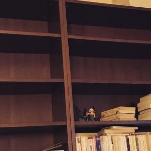 Des bibliothèques toutes vides
