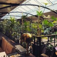 Bar balcon de l'Alcazar