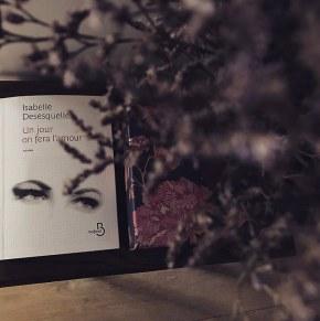 Un jour on fera l'amour, d'Isabelle Desesquelles