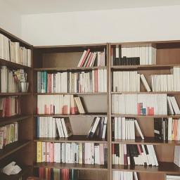Bibliothèques en cours de rangement