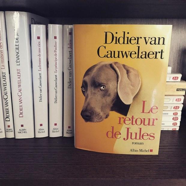 Le retour de Jules de Didier van Cauwelaert