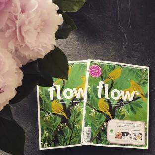 Flow néerlandais et Flow français