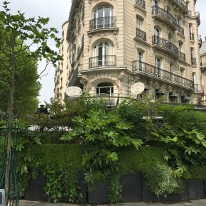 Paris mythique : la Closerie des Lilas