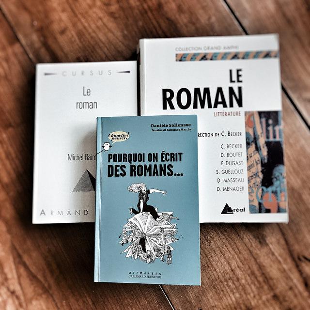Pourquoi on écrit des romans, de Danièle Sallenave