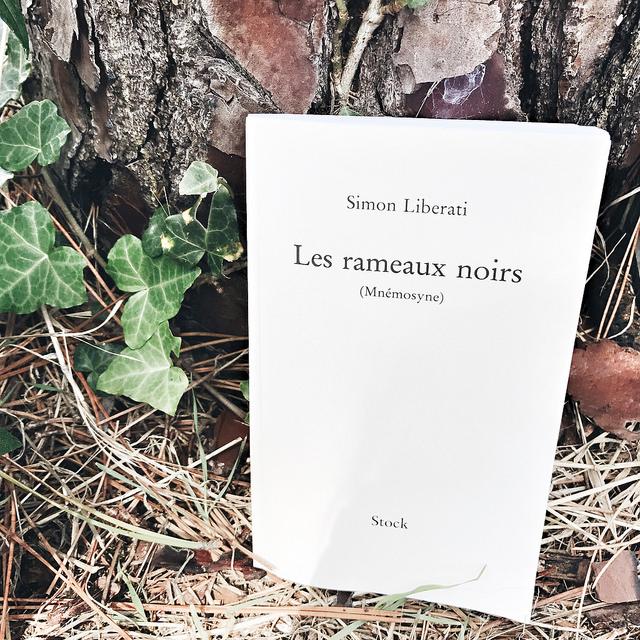 Les rameaux noirs (Mnémosyne) de Simon Liberati