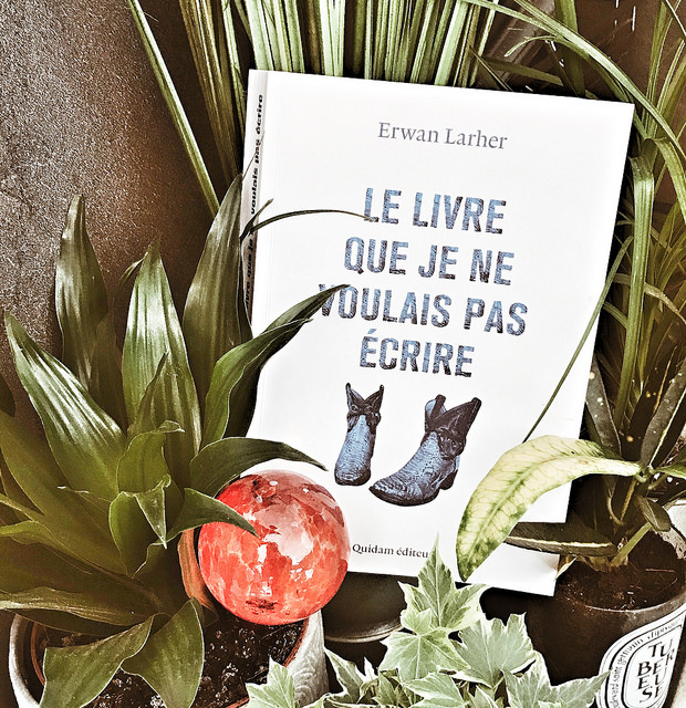 Le livre que je ne voulais pas écrire, d'Erwan Larher