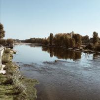Bords de Loire