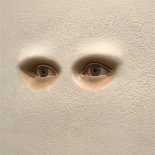 Sophie Calle - Ce que je vois, 1994