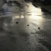 Un rayon de soleil sous la pluie