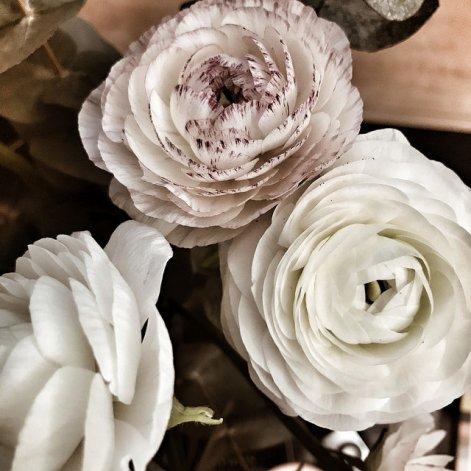 Un bouquet de renoncules