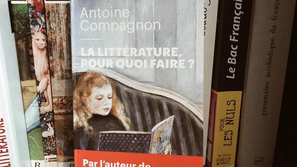 La littérature, pour quoi faire ? d'Antoine Compagnon
