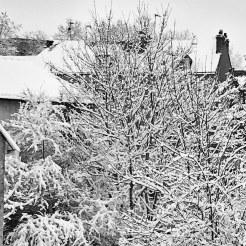 La neige, quand elle tombe