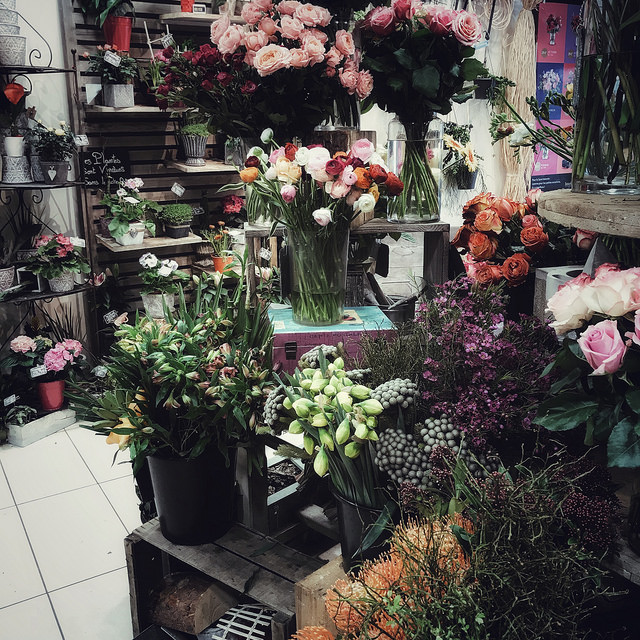 Des fleurs pour le printemps