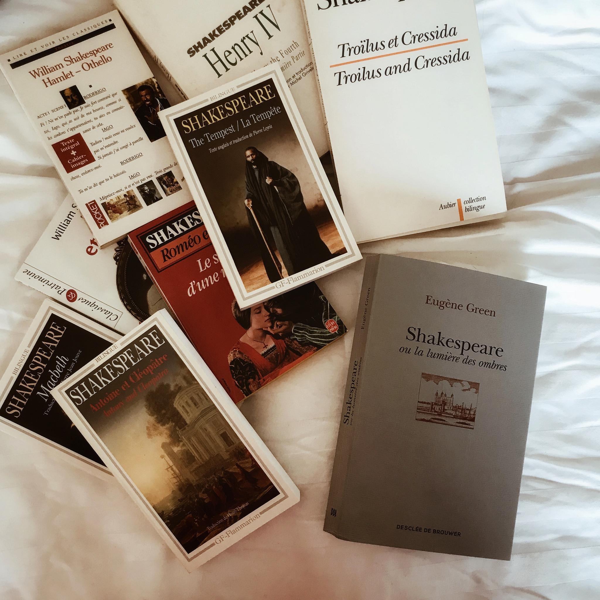 Shakespeare ou la lumière des ombres, d'Eugène Green : un génie en clair-obscur