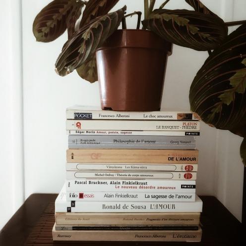 Amour, littérature, philosophie