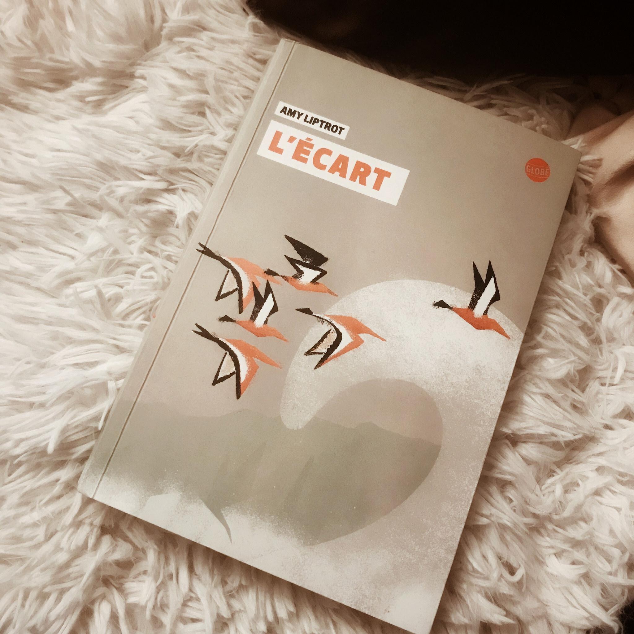L'Ecart, d'Amy Liptrot : savoir où appartenir