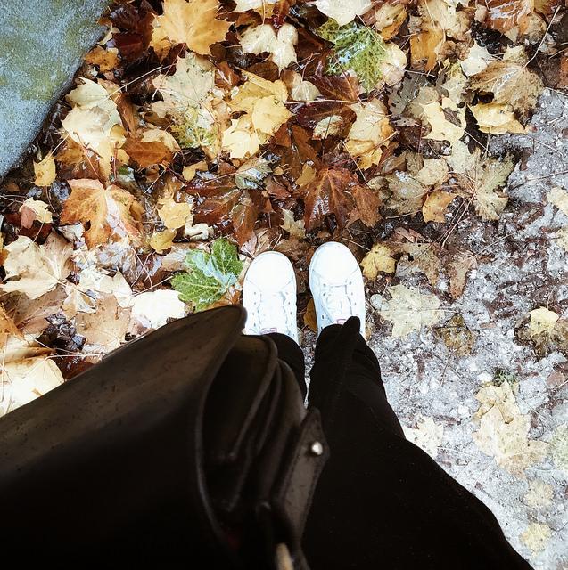 Lundi sous la pluie