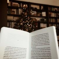 Lire près du sapin