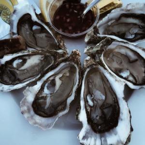 Des huîtres régénérantes