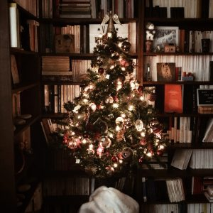 En attendant Noël : le sapin