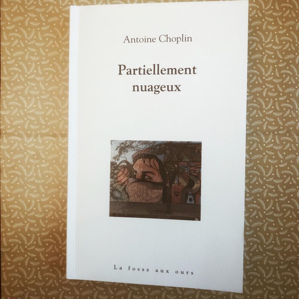 Partiellement nuageux, d'Antoine Choplin : histoire et mémoire
