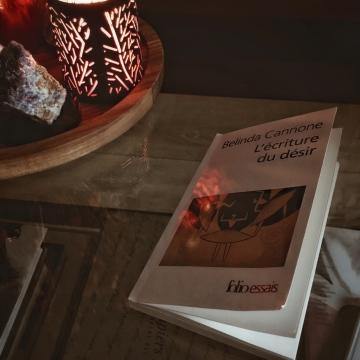 L'Ecriture du désir de Belinda Cannone : la littérature et le monde