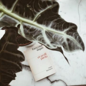 Un profil perdu, de Françoise Sagan : s'échapper de sa cage dorée