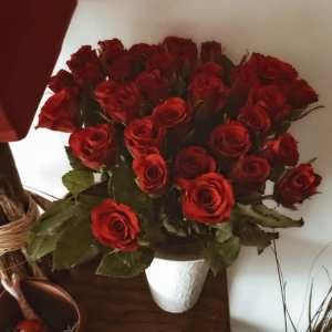 40 roses rouges