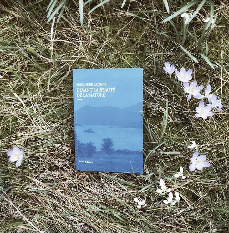Devant la beauté de la nature, d'Alexandre Lacroix : l'esthétique du monde