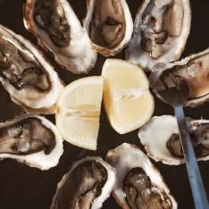 Quelques huîtres