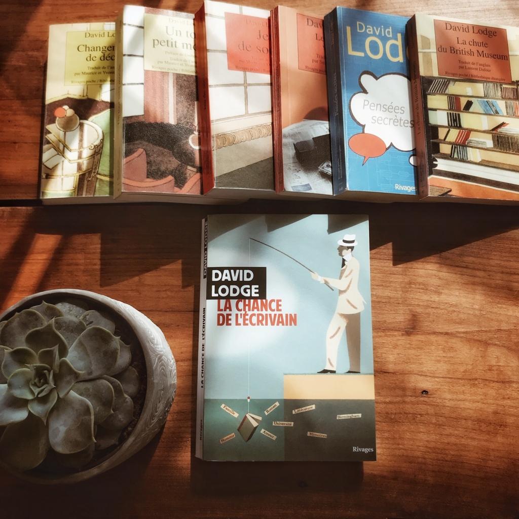 La chance de l'écrivain, de David Lodge : la fabrique de la fiction