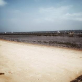 Une journée au Cap-Ferret