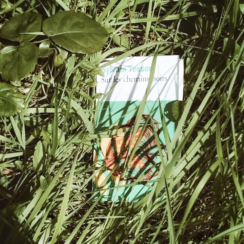 Sur les chemins noirs, de Sylvain Tesson : la carte et le territoire