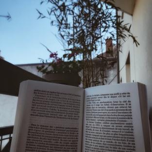 Lire dans la chaise longue