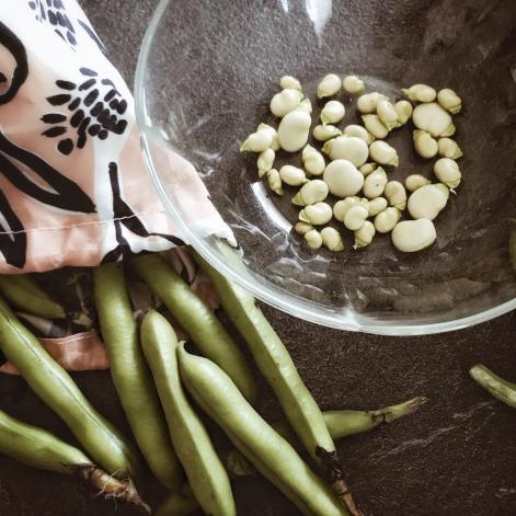 Écosser des fèves