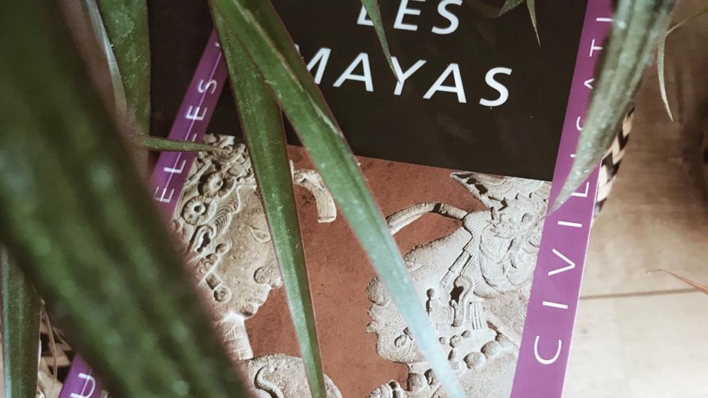Les Mayas, de Claude-François Baudez : à la découverte d'une civilisation disparue