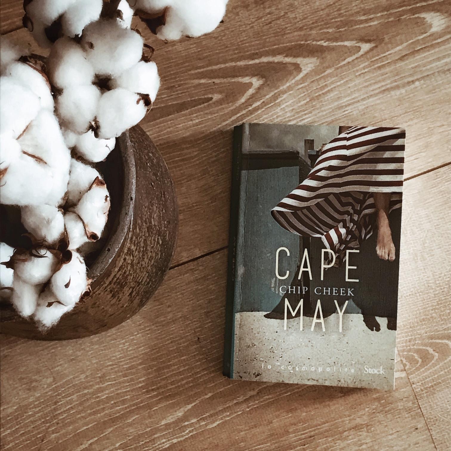 Cape May, de Chip Cheek : la vie inimitable