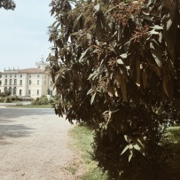 Jardin public Indro Montanelli