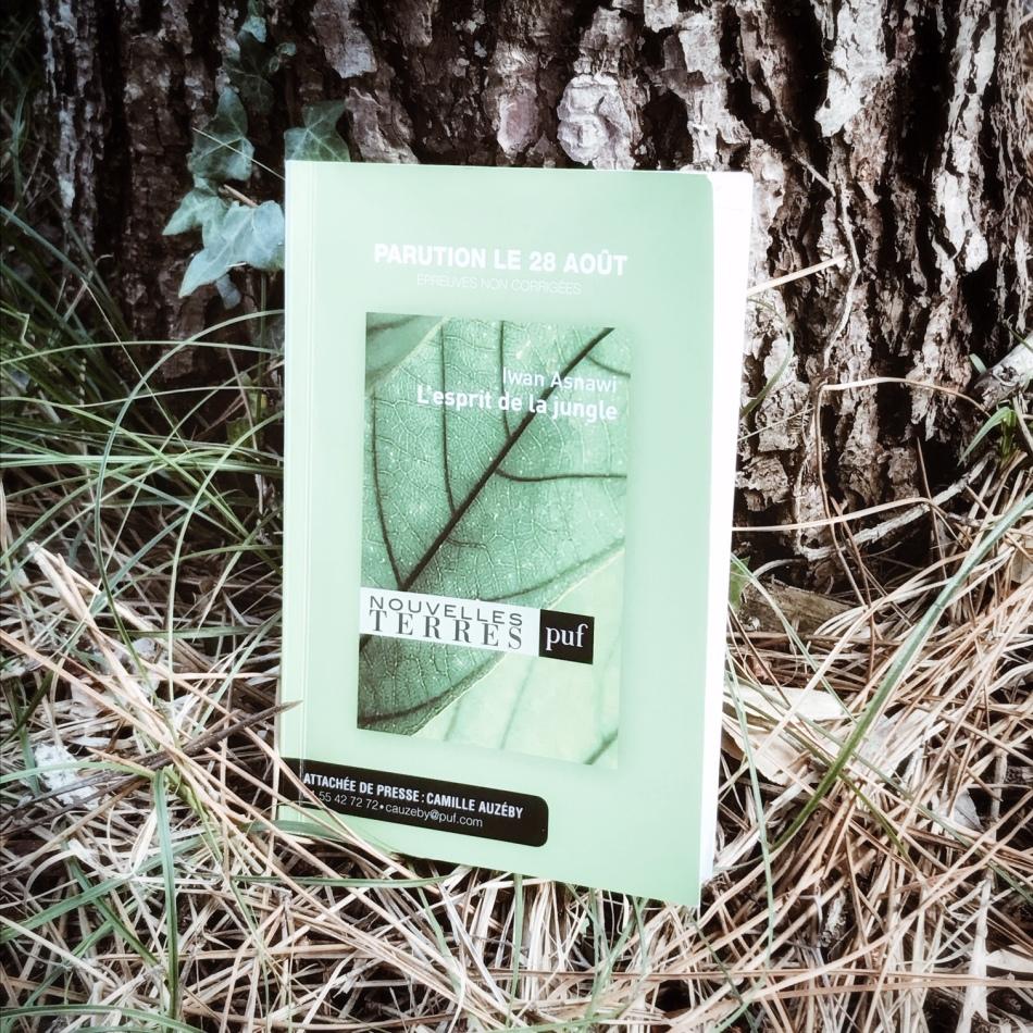 L'Esprit de la forêt, de Iwan Asnawi : un chamane naturel