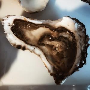 Une huître en forme de coeur